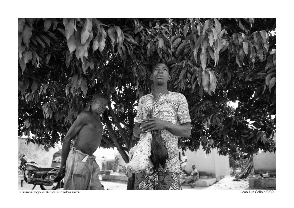 JLG photo N/B Sous un arbre sacré - Cassena, Togo